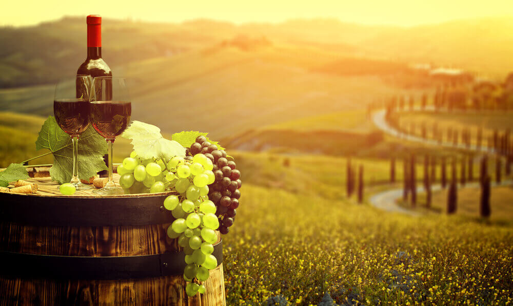 Our Favourite 5 Vineyards in Italy!