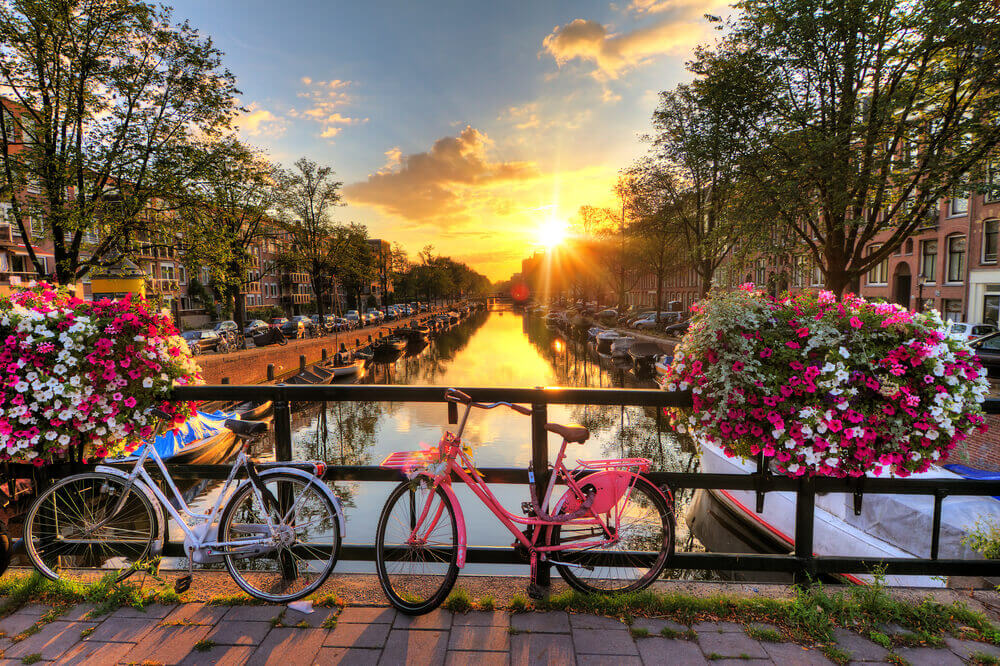 Best Things to Do in Amsterdam!