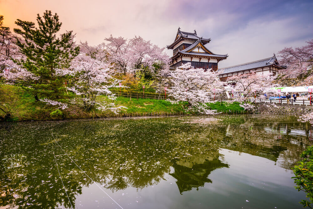 Nara, Japan at Koriyama Castle in the spring season, best places to visit in japan