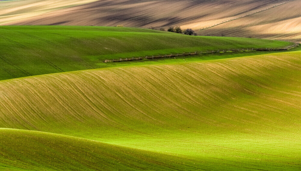 plan my route. Waves of green fields in southern Moravia. Czech Republic