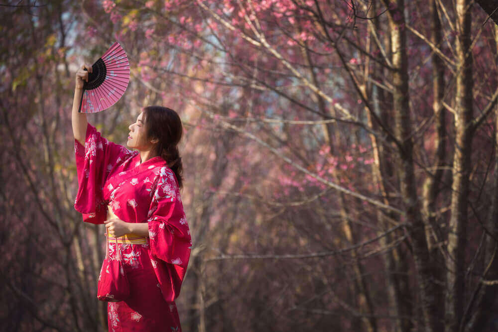 Touring Plans for Japan's Romantic Cherry Blossom Season