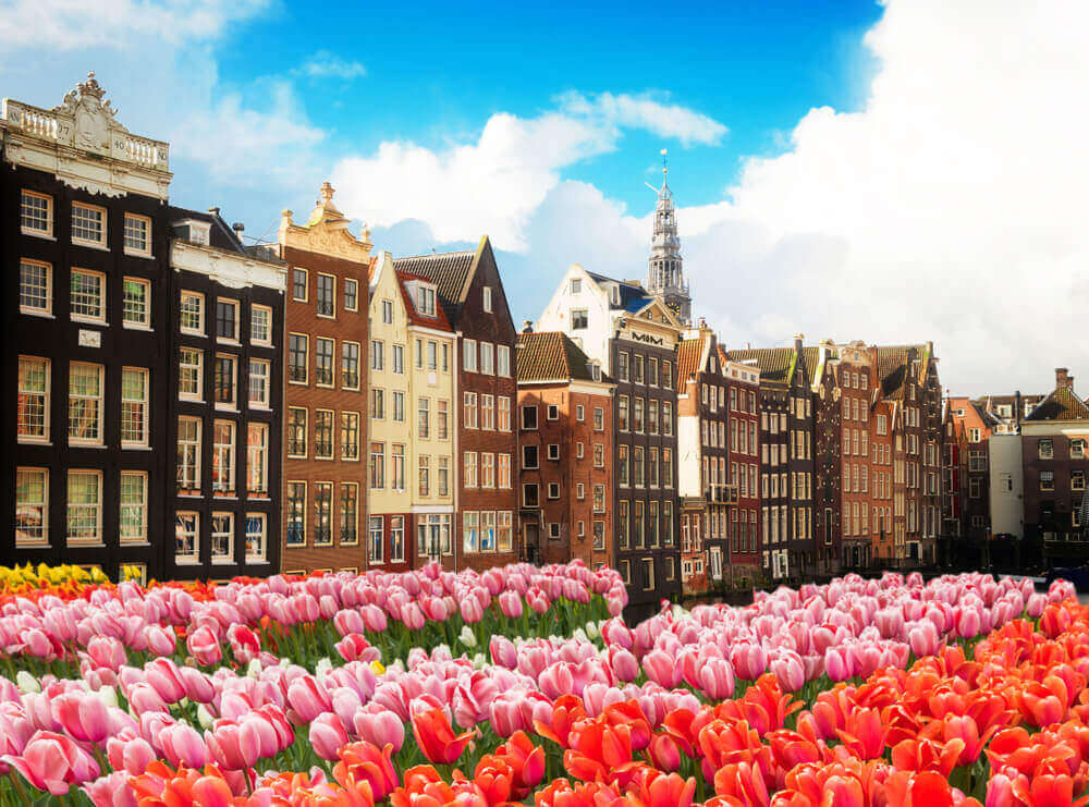 Plan a trip to Europe - 5 Best Cities in the Netherlands for the Solo Traveler