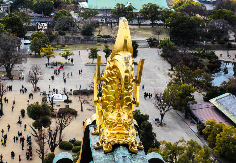 Golden fish at Osaka castle,Golden fish at castle. touring plans